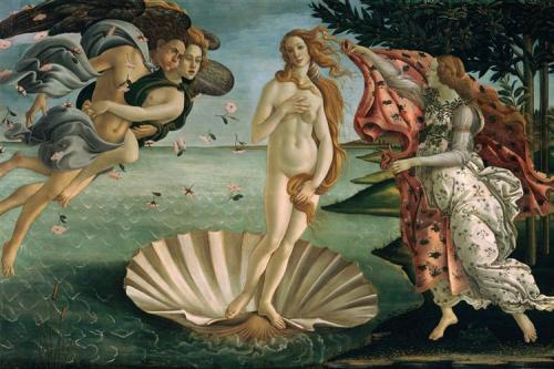 the-birth-of-venus-1485(1).jpg!Large